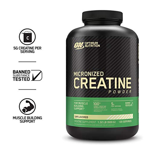 Optimum Nutrition Micronized Creatine Monohydrate Powder, Unflavored, Keto Friendly, 600 grams (Packaging May Vary)