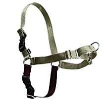 PetSafe Easy Walk Harness, Large, Fawn & Brown for Dogs