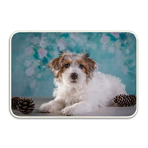 kahf Welcome Mat Pine Cone Terrier Decorative Floor Mat Kitchen,Bathroom Doormat Floor Mats