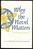 img - for Why the Novel Matters: A Postmodern Perplex book / textbook / text book