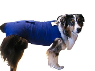 Surgi Snuggly E Collar Alternative