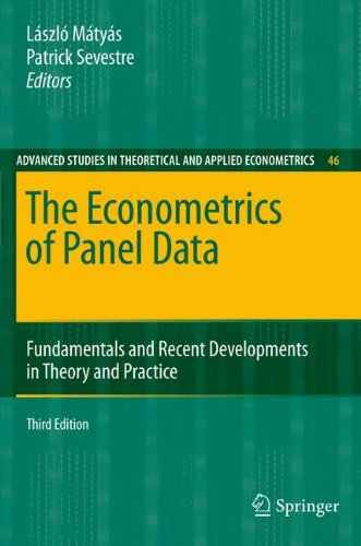 The Econometrics of Panel Data: Fundamentals and Recent Developments in Theory and Practice (Advanced Studies in Theoret