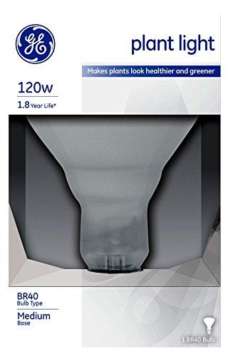 GE Lighting 21000 120-Watt Incandescent Plant Lighting Bulb, R40 Style (5