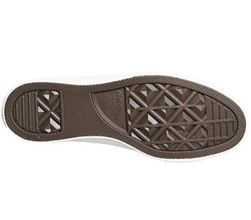 Star Unisex 159533 Taylor Egret Chuck All weiß Natural Black Converse Elfenbein Erwachsene Sneaker C159533 ygqTHAAY