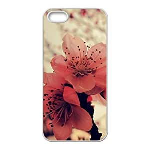 Attractive red flowers personalized creative custom protective phone Samsung Note 2