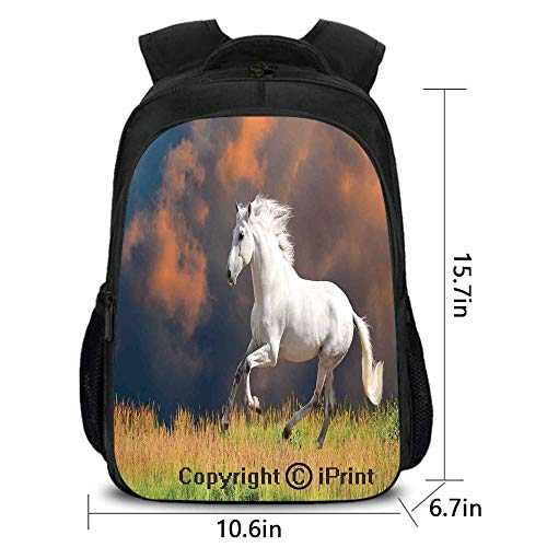 Notebook Computer Schoolbag,Andalusian Horse with a Majestic Dust Cloud Background Strong Desires Sign Photo for Your Choice,15.7