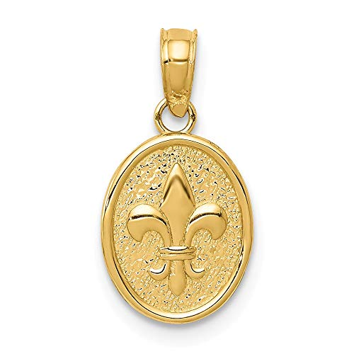 14k Yellow Gold Small Fleur De Lis Oval Disc Pendant, 9 x 17mm ()