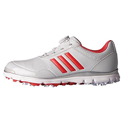 adidas Women's W Adistar LITE BOA CLGREY Golf Shoe, Clear/Grey, 8 M US