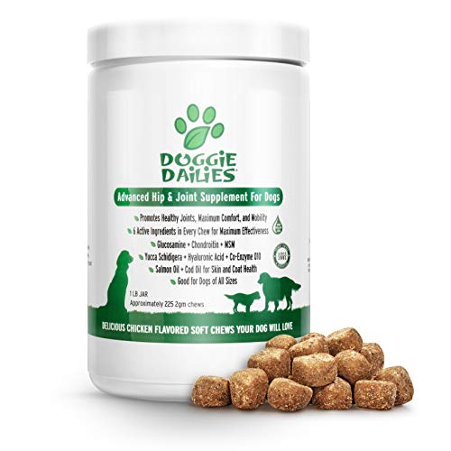2 Joint Support Formula - Doggie Dailies Glucosamine for Dogs: 225 Soft Chews, Advanced Hip & Joint Supplement for Dogs with Glucosamine, Chondroitin, MSM, Hyaluronic Acid & CoQ10, Premium Joint Relief for Dogs Made in the USA
