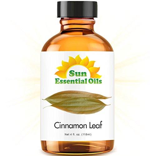 Cinnamon Leaf (Large 4 ounce) Best Essential Oil