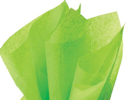 ackaged 48ct Bright Lime Citrus GreenTissue Paper 20 Inch x 30 -