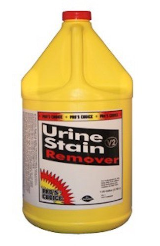 - Cti- Pros Choice- USR Urine and Stain Remover- 1 U.S. Gallon
