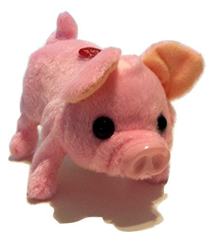 Cute Piggy – My Lovely Mini Pig – Walks, Snorts, Moves I