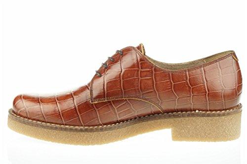 Blucher En Cuir Lince Shoes Brown qwZpZzH