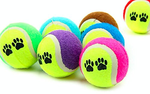Balls for dogs Pack of 15