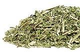 Boneset Herbal Tea