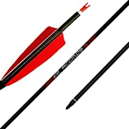 """12pc ID 6.2mm .244"""" Custom Length Carbon Arrows 22-33 Inch Spine 250 300 340 400 500 600 700 800 Target P"""