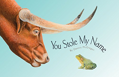 You Stole My Name by [McGregor, Dennis]