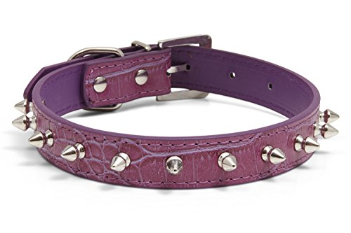 Kid Dog Punk Rock Spiky Studded Dog Collar - 6 Colors, 4 Sizes - Tough Biker Look for Small & Medium Breeds - Metal Spikes (14