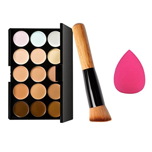 Fheaven 15 Colors Makeup Concealer Contour Palette + Water Sponge Puff + Makeup Brush