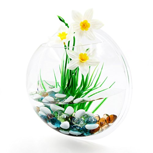 uxcell 10.2inch Dia/1.23 Gallon Acrylic Wall Mounted Fishbowl Tank Hanging Plant Pot by uxcell