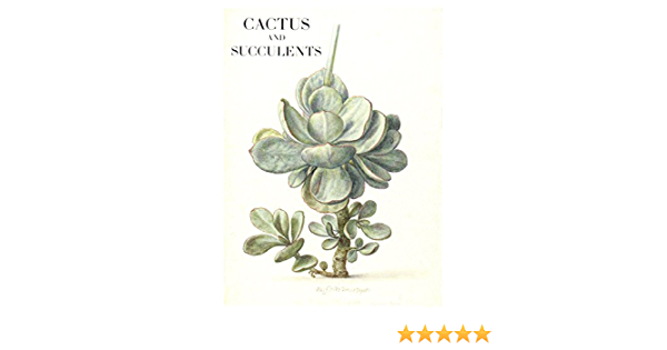Cactus Garden Design 12 pcs D00005-11 A1 Cards and Envelopes Custom Note Cards with Envelopes