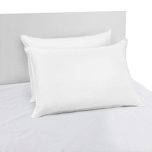 Beautyrest Asthma and Allergy Friendly Down Alternative Pillow, Two Pack, Standard, White, 2 -