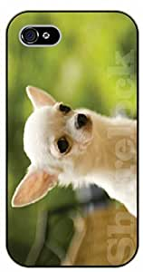 iPhone 6 Case White chihuahua - black plastic case / dog, animals, dogs