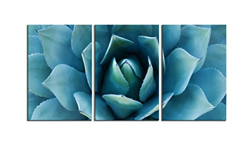(Plant Wall Art Blue Agave Canvas Prints Agave Flower Stretched And Framed Artwork Canvas Printing Canvas Wall Art Print 16 x 36 Inch Total Deco Gift (Blue, 16x36inch))