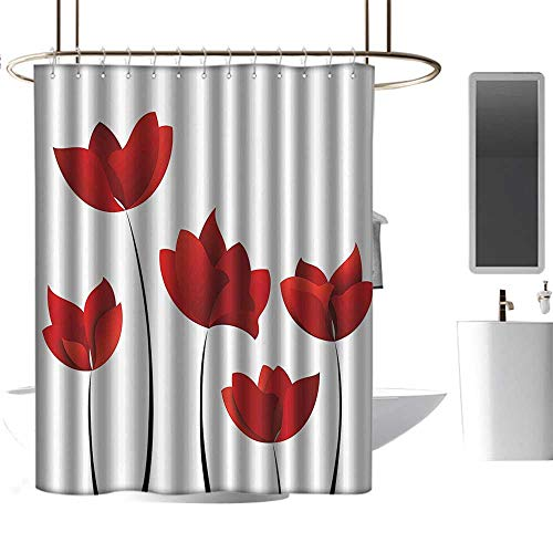 homehot Shower Curtains Dragon Ball Floral,Valentines Inspired Exquisite Rose Petals Vivid Blossoms Florets Nature Illustration,Red,W36 x L72,Shower Curtain for - Dragon Valentine Ball