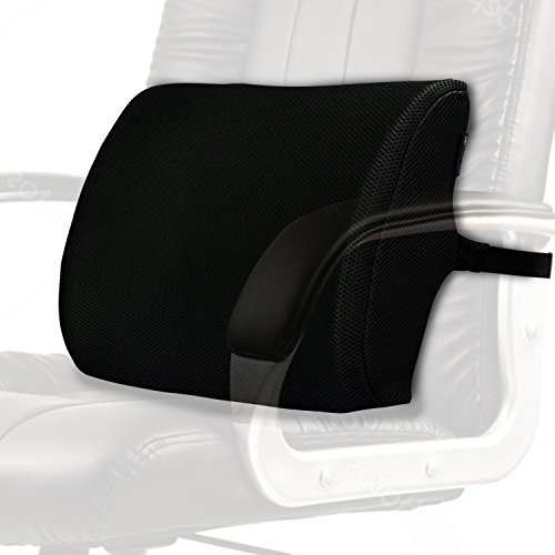 Mesh Lumbar Pillow Lower Back Supporter w/ Spine Huggar Design - Portable Low & Mid Adjustable, Memory Foam Chiropractic Support for Office, Gaming Chairs & Automobile Seats by Compact Technologies (Sitting Pillows Large)