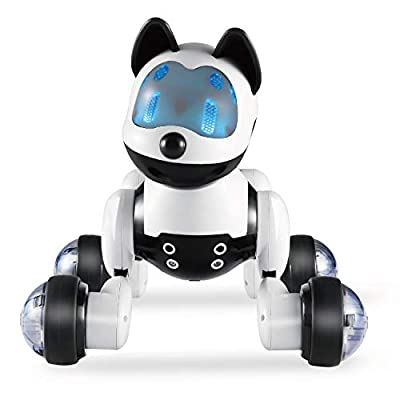 Hi-Tech Wireless Interactive Robot Cat Robot Dog Best Birthday Present for Girls, Daughter, Kids, Children
