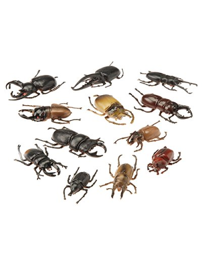 U.S. Toy Life-like Beetles (36 Pack) | Bugs for Party Favors and Decorations and Halloween Parties