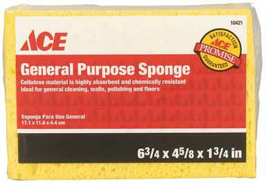 Acme Sponge & Chamois R70ACER General Purpose Sponge - General Chamois