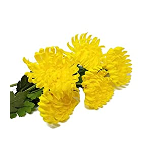 "Floral Kingdom Artificial Real Touch 24"" Chrysanthemum Flowers Fuji Spider Mum for Home, Office, Weddings, Bouquets (Pack of 5) (Yellow) 68"