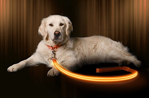 Illumiseen LED Dog Leash - USB Rechargeable - Your Dog Will Be More Visible & Safe - 6 Colors (Red, Blue, Green, Pink, Orange & Yellow) - Perfect to Use with Our Matching Collar (4 Feet, Orange) (Color Leash Orange Dog)