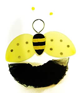 Bee Wings Costume with Bumble Bee Wings, Antennas and 4 Layer Tutu