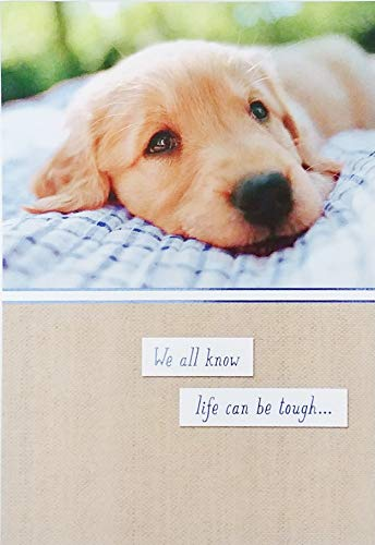 (We all know life can be tough. But we all know You're Tougher! Stay Strong - Inspirational, Motivational, Cheer Up, Here For You Greeting Card with Golden Retriever Labrador Dog)
