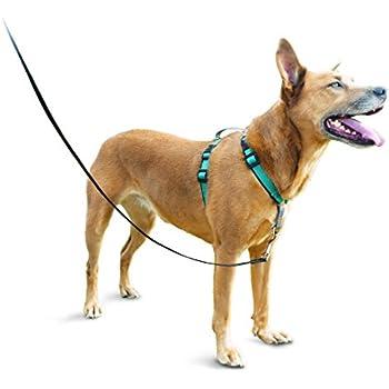 Amazon Petsafe Easy Walk Harness Large Blacksilver For Dogs