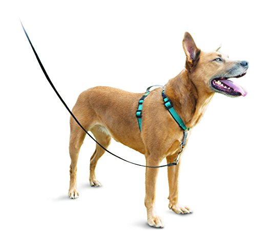 PetSafe 3in1 Harness, from The Makers of The Easy Walk Harness, Fully Adjustable No-Pull Dog Harness (Measurements Dog Harness)