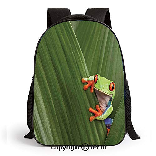 Preschool Backpack for Kids Girls Toddler Red Eyed Tree Frog Hiding in Exotic Macro Leaf in Costa Rica Rainforest Tropical Nature Photo Kindergarten School Bookbags,Green