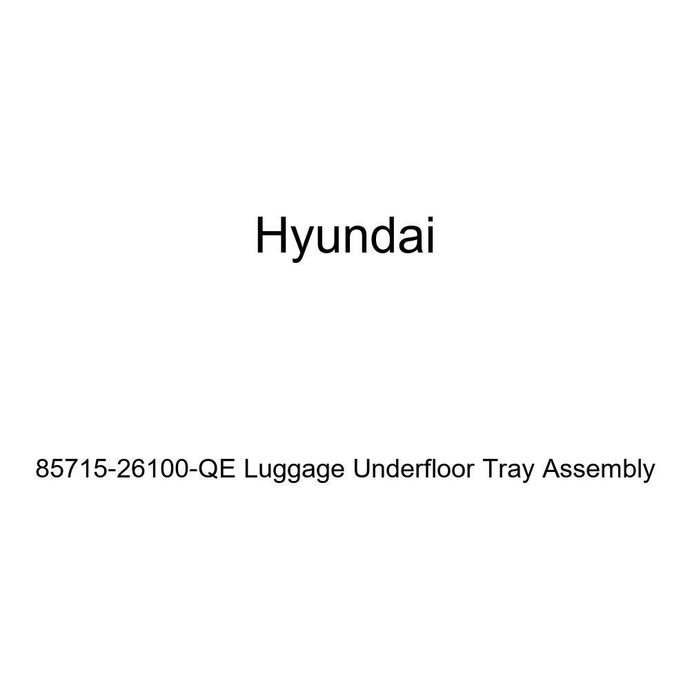 Genuine Hyundai 85715-26100-QE Luggage Underfloor Tray Assembly