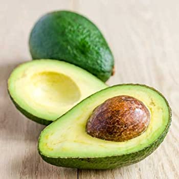 Brighter Blooms Hass Avocado Tree - up to 5 ft. tall trees, ready to give fruit - Get Delicious Avocado Fruit Year Round from This Fruit Tree