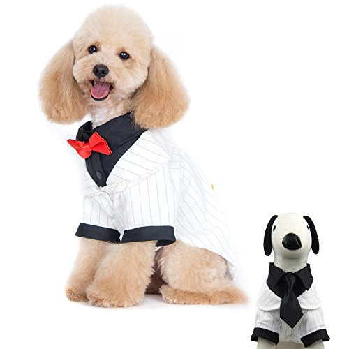 White Dog Tank (Alfie Pet by Petoga Couture - Oscar Formal Tuxedo with Black Tie and Red Bow Tie - Color: White, Size: XL)