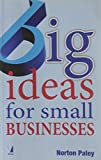 img - for Big Ideas for Small Businesses by Norton Paley (2011-01-01) book / textbook / text book