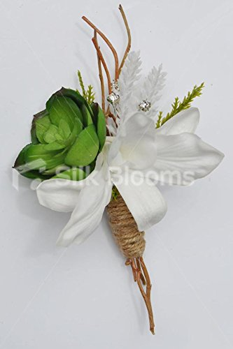 (Beautiful Artificial Green Succulent and White Dendrobium Orchid Buttonhole)