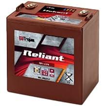 Trojan Reliant T875-AGM Deep Cycle Battery