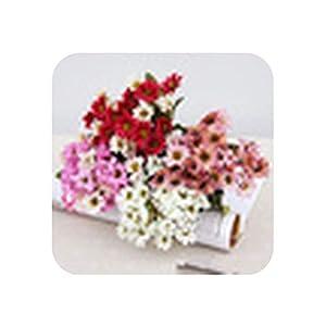 Show-Fashion&Flowers Autumn Velvet Aster Ornaments Simulation Plants Ikebana Garden Wedding Home Decor,1 7