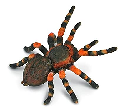 Amazon CollectA Insects Mexican Redknee Tarantula Toy Figure