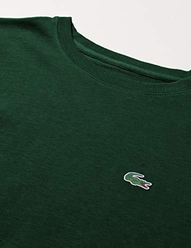Lacoste T-Shirt Garçon